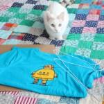 Como fazer casinha para gatos