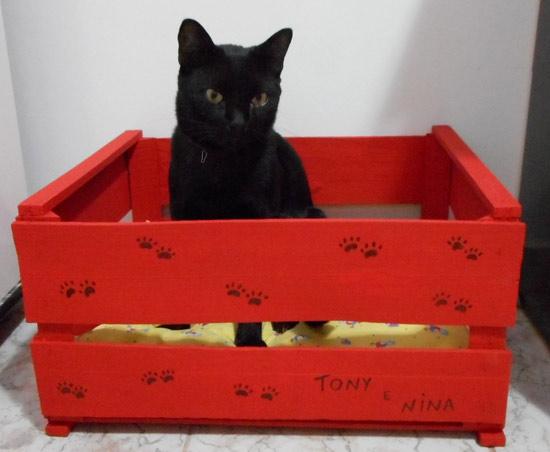 customizando-caixa-gatos-15